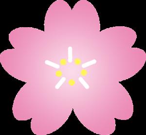 無料のフリー素材集 桜の花びら