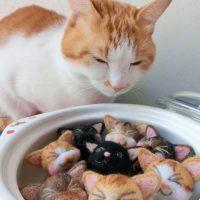 土鍋の使い始め!ちょっとまった!目止めはしましたか?